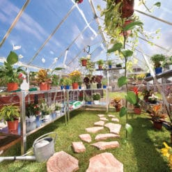 Palram Silver frame greenhouse 8'