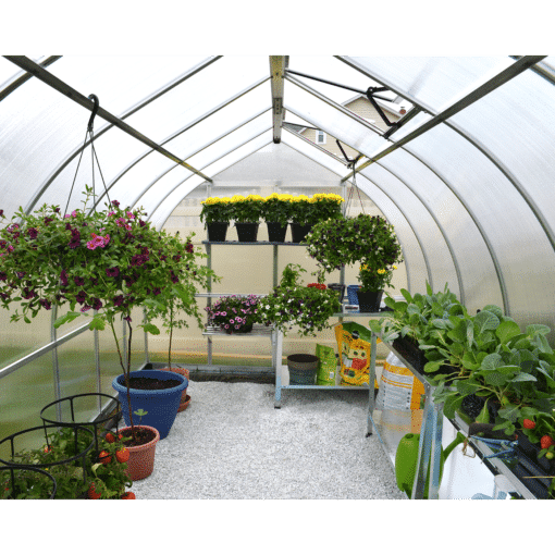 Bella Greenhouse inside